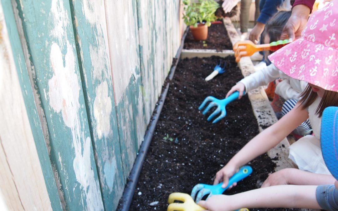 Learning Gardens